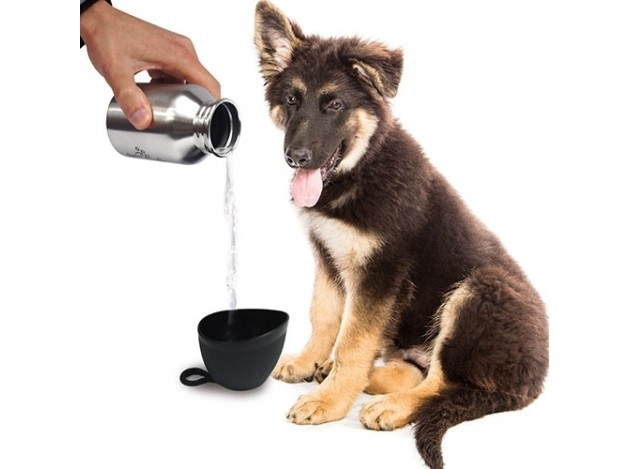 Bebedero Portátil para Perros
