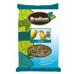 Bradium mixtura canarios