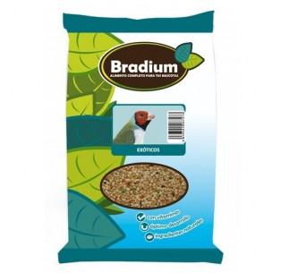 Bradium Mixtura Exóticos
