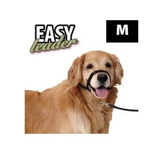 Easy Leader