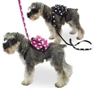 Mochila para perros pequeños