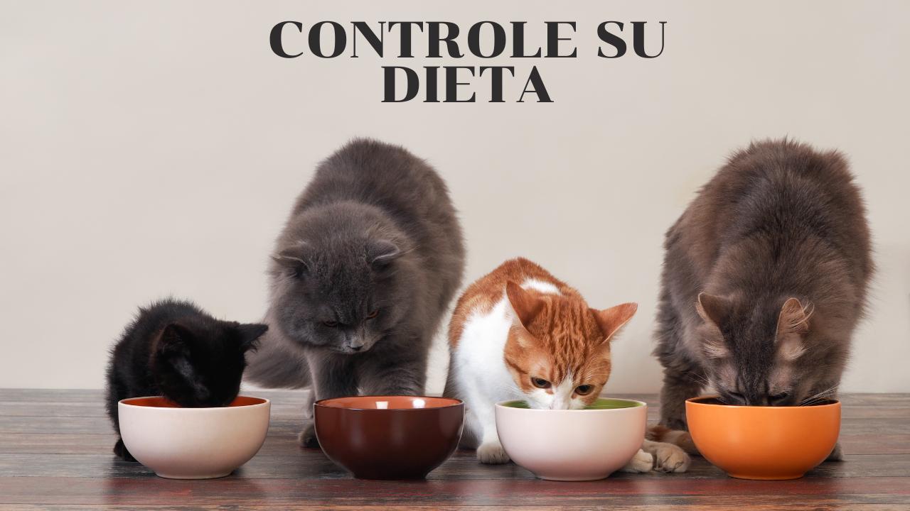 Controla su comida
