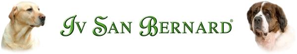 IV SAN BERNAD